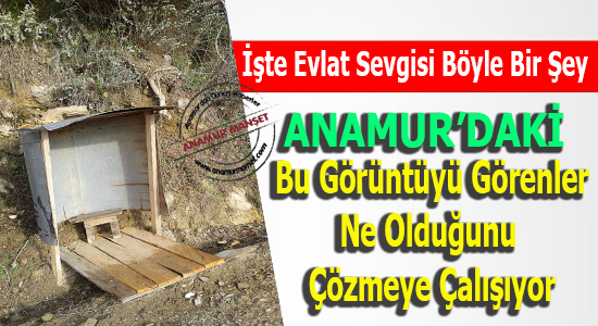 Anamur, Anamur Haber, Anamur Haberleri, Anamur Son Dakika, D.KÖYLER,