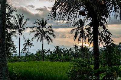 Rizieres-Munduk-Bali