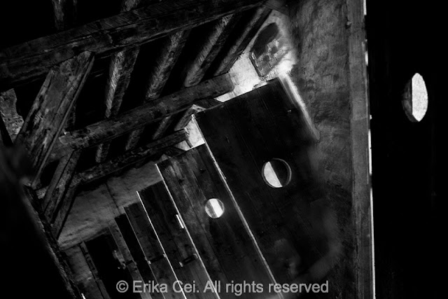 Risiera di san Sabba celle