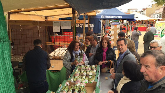 Mercado agro-artesanal, Feria del Espárrago en Alcalá del Valle