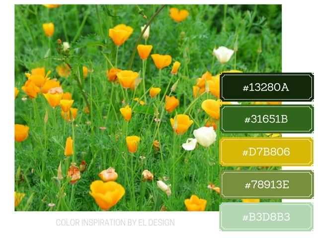 Σχεδιασμός blog με βάση το χρώμα : Πράσινο