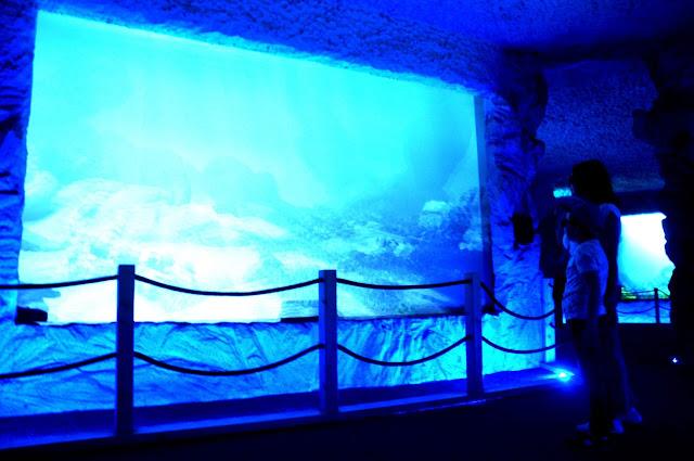 Prehistoryczne Oceanarium w Bałtowie