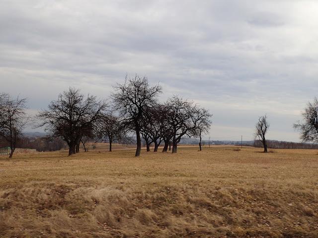 Pochmurne krajobrazy Jury Krakowsko-Częstochowskiej