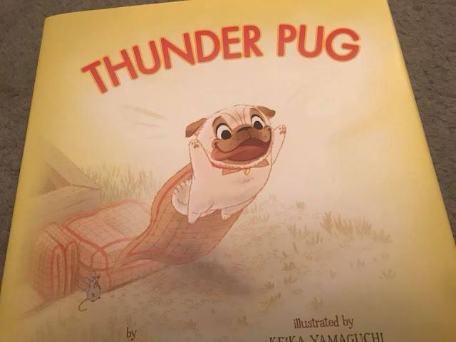 thunder-pug-book