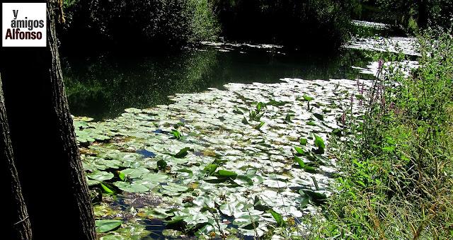 AlfonsoyAmigos - Cañón del Río Lobos