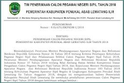 Download Pengumuman Rincian Formasi CPNS Kab. Pali 2018 PDF