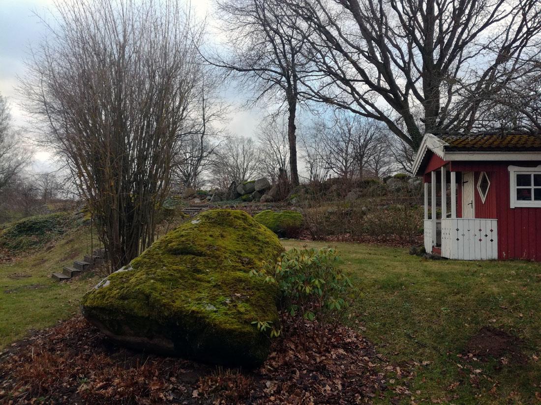 Il giardino, 30 gennaio 2018