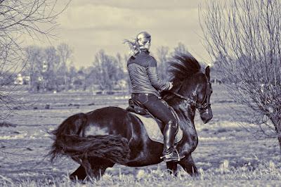 Jak zostać instruktorem jazdy konnej?