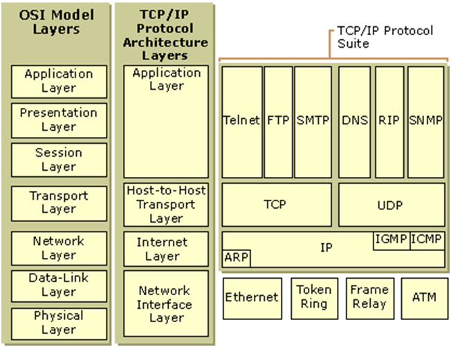 Networking topologies and tcp ip protocol