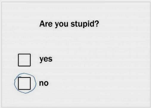 Test your Stupidity