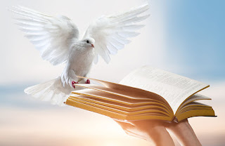 Het evangelie werkt