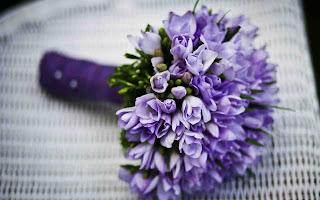 blue flowers for whatsapp dp