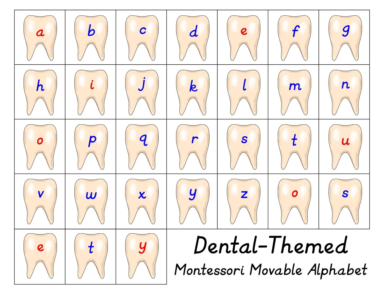Dental Themed Movable Alphabet