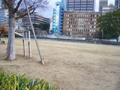大阪市・中之島公園ウォーキング 芝生広場