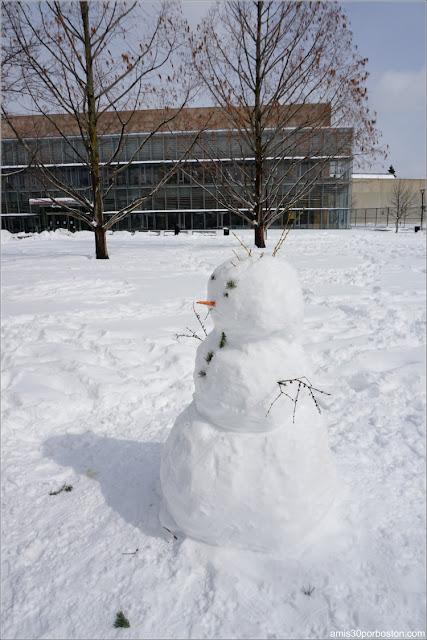 Muñeco de Nieve en Cambridge después de la Tormenta Skylar