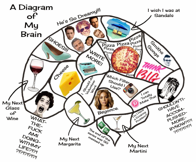 A Glimpse Inside My Brain...