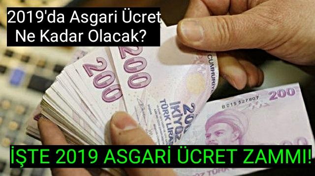 2019 asgari ücret