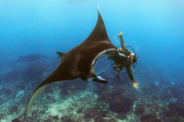 Jun V Lao, Underwater Photography, Scuba Diving, Scuba Instructor