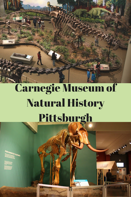 Carnegie Museum of Natural History Pittsburgh