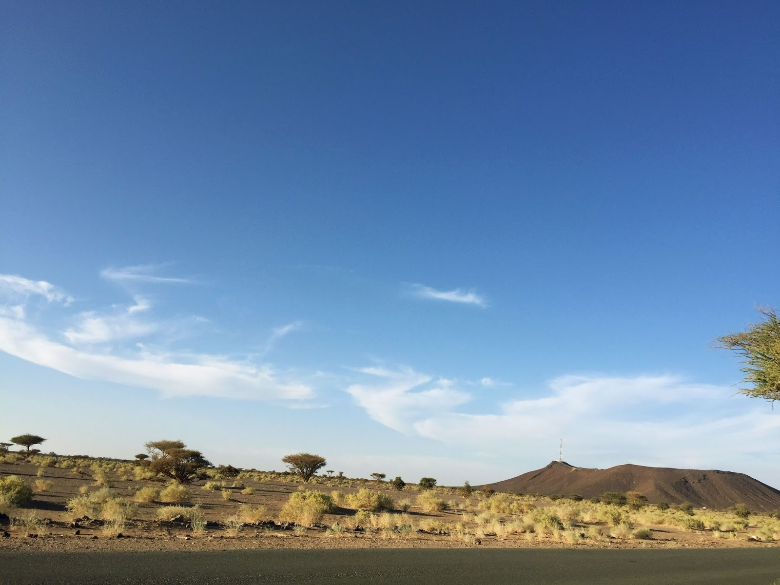 saudi arabia landscape, desert road
