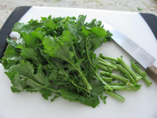 Cucinare broccoli rabe with orecchietti pasta for Cucinare broccoli