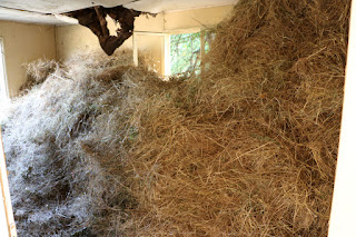 Quite a lot of hay inside