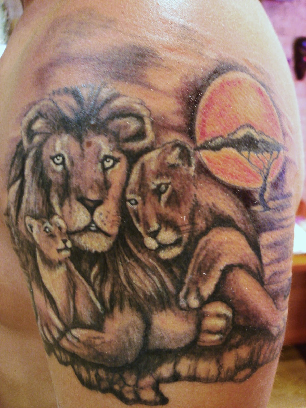 Toop Tattoo Los Reyes De La Selva Toop Tattoo Alicante Leon Tattoo