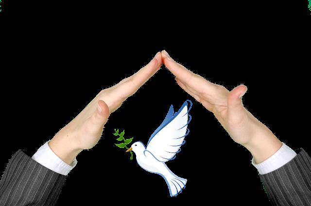 como viver em paz