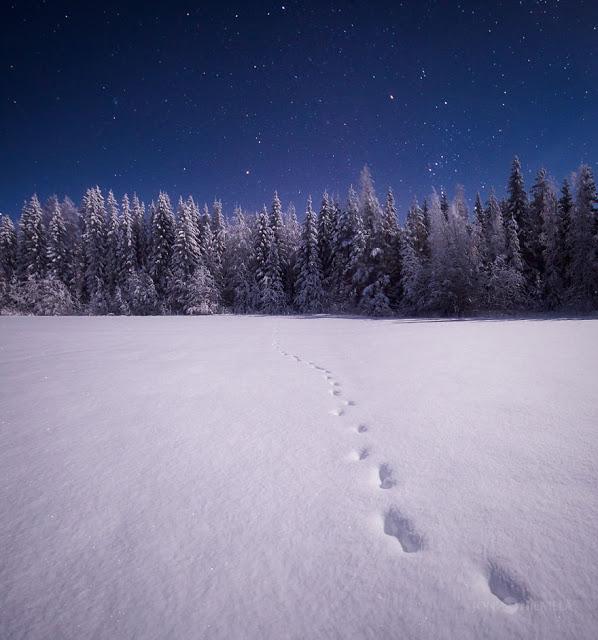 omorfos-kosmos.gr - Καταπληκτικές φωτογραφίες από το νυχτερινό ουρανό της Φινλανδίας