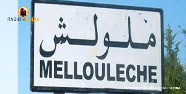 Melloulèche