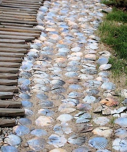 seashell garden path