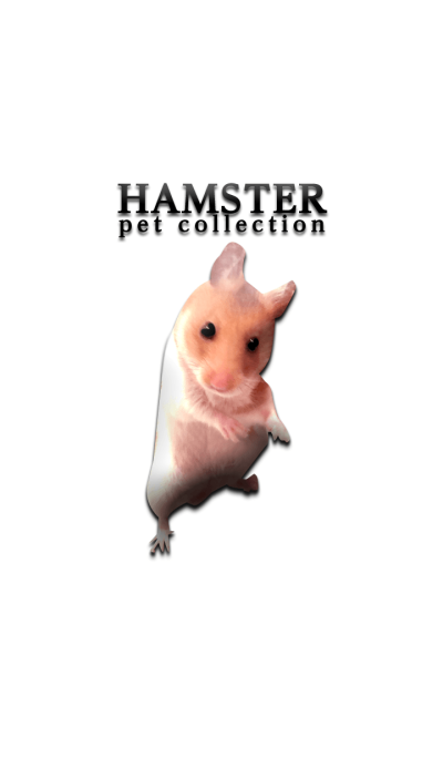 Hamster pet collection
