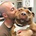 Perrita pitbull no puede dejar de sonreír tras ser adoptada