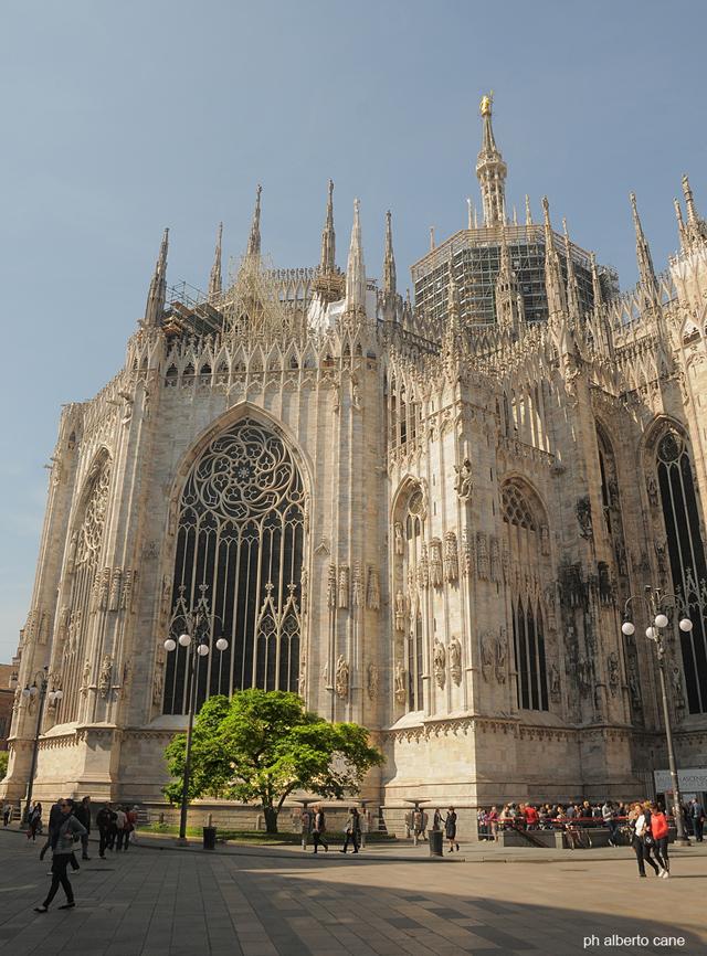 Milano, il duomo e la magnolia