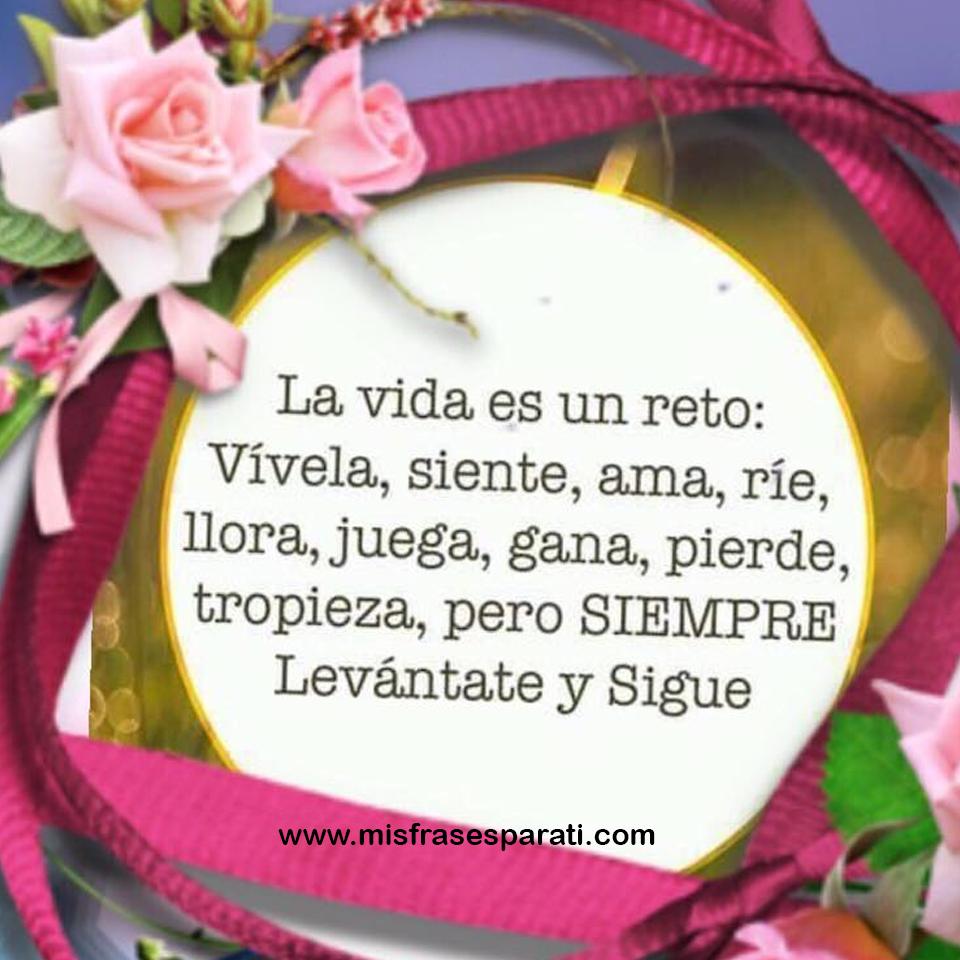 La vida es un reto, vívela, siente, ama, ríe, juega, gana, pierde, tropieza; pero siempre levántate y sigue adelante.
