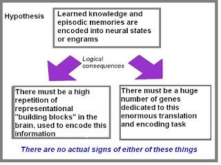 memory encoding