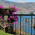 Hotel Monitor revela Julho desfavorável para a Madeira