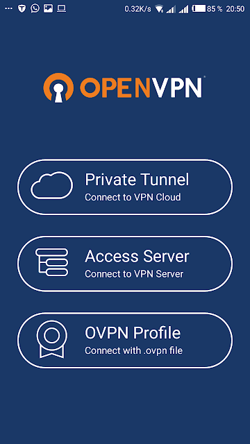 Connect openVPN