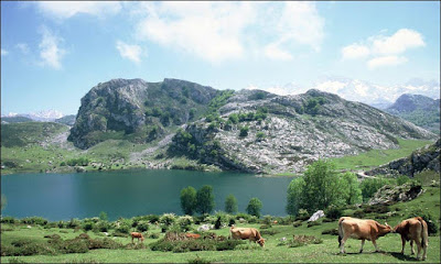 http://webcamsdeasturias.com/webcam.php?id=159