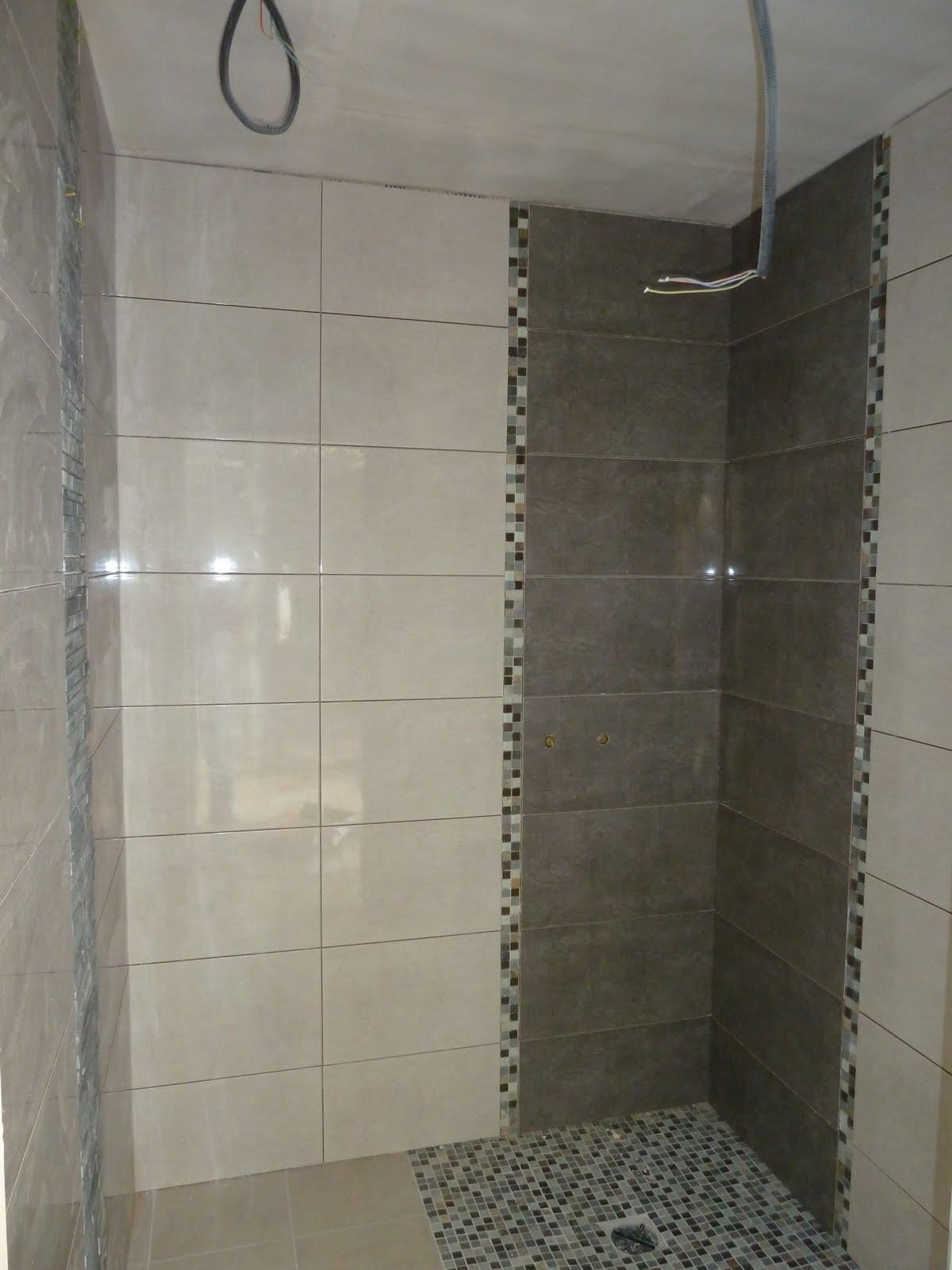 la maison du bonheur de m line tilan c line et beno t octobre 2012 peinture carrelage. Black Bedroom Furniture Sets. Home Design Ideas