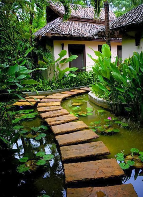 Amazing garden design idea: Lotus blossoming in water near very beautiful garden pathway towards sweet home