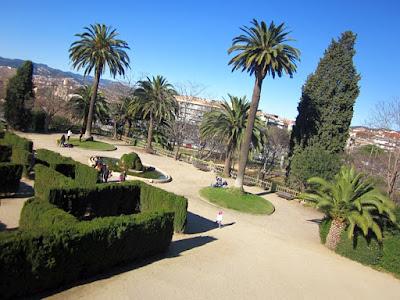 Palmeras del Parque de Torreblanca