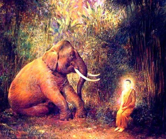 Đạo Phật Nguyên Thủy - Chuyện Kể Đạo Phật - Vô Ngã