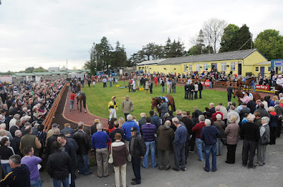 Roscommon racecourse, horse racing, Ireland