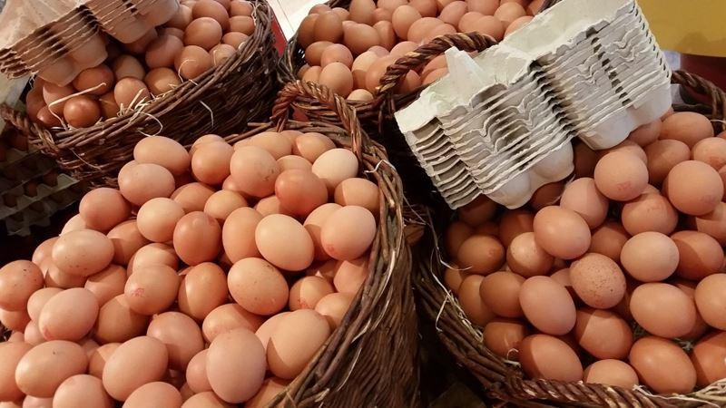 Organik Gıdada Şampiyon Yumurta