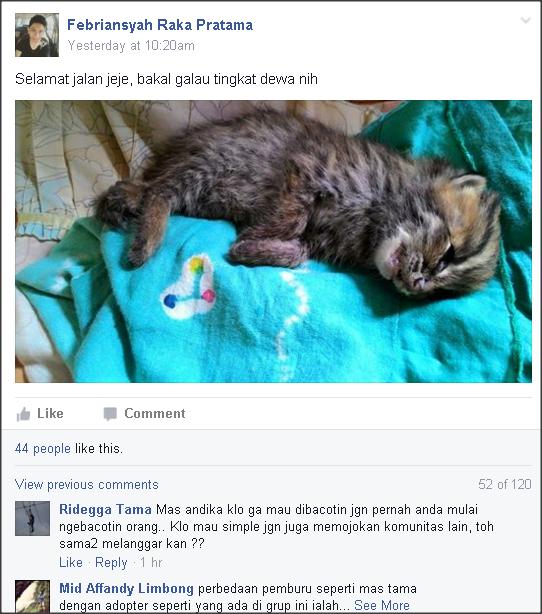 Tren Pelihara Kucing Hutan Ala Indon
