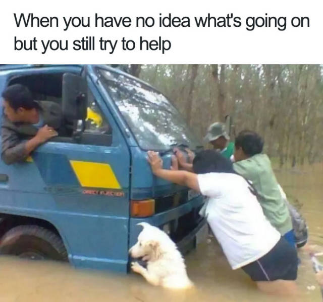When you have no idea what's going on but you still try to help