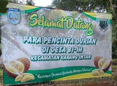 Kontes Durian Biih Diikuti Berbagai Jenis Durian
