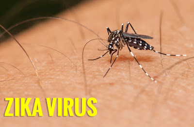 Virus Zika, Tanda-Tanda Di Jangkiti Dan Langkah-Langkah Mencegah