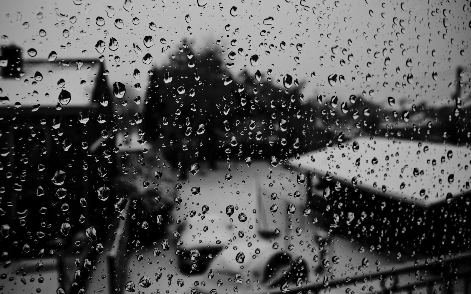 Monsoon Wallpapers